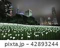 Light Rose Garden In Hong Kong City at night 42893244