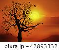 夕日と裸木 42893332