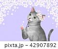 ねこ ネコ 猫のイラスト 42907892