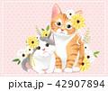 ねこ ネコ 猫のイラスト 42907894
