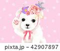 かわいい キュート 可愛いのイラスト 42907897