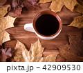 お茶 ティー 紅茶の写真 42909530