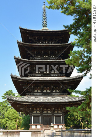 世界遺産・奈良公園 42911887