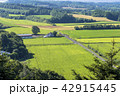 風景 晴れ 自然の写真 42915445