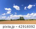 風景 晴れ 自然の写真 42916092