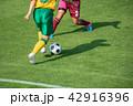 女子サッカー試合風景 42916396