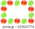 りんご 青林檎 フルーツのイラスト 42920774