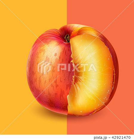 Peach on pink background 42921470
