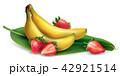 バナナ 実芭蕉 いちごのイラスト 42921514