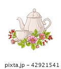 フラワー 花 ハーブのイラスト 42921541