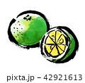 筆描き 柑橘類 42921613