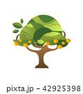 オレンジ 樹木 樹のイラスト 42925398