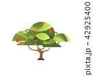 リンゴ 林檎 樹木のイラスト 42925400