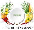 ベジタブル 野菜 爽やかなのイラスト 42930591