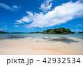 西表島 星砂の浜 ビーチの写真 42932534