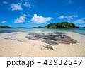西表島 星砂の浜 海の写真 42932547