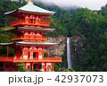 大社 神社 世界文化遺産の写真 42937073
