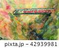 箱根登山鉄道 紅葉 出口鉄橋 渓谷 42939981