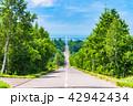 《北海道》天に続く道・ドライブイメージ 42942434