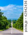天に続く道 斜里町 道路の写真 42942436