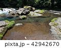 菊池渓谷 川 清流の写真 42942670
