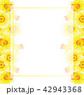フラワー 花 フレームのイラスト 42943368