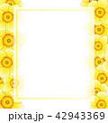 フラワー 花 フレームのイラスト 42943369