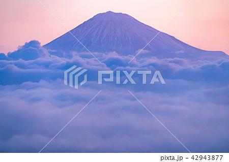 《静岡県》富士山と大雲海 42943877