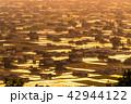 夕暮れ 夕景 散居村の写真 42944122