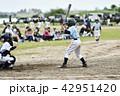 野球 スポーツ 子供の写真 42951420