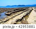 鬼の洗濯板 日南海岸 青島の写真 42953881