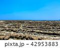 鬼の洗濯板 日南海岸 青島の写真 42953883