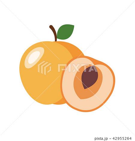 Healthy organic apricot 42955264