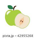 りんご アップル リンゴのイラスト 42955268