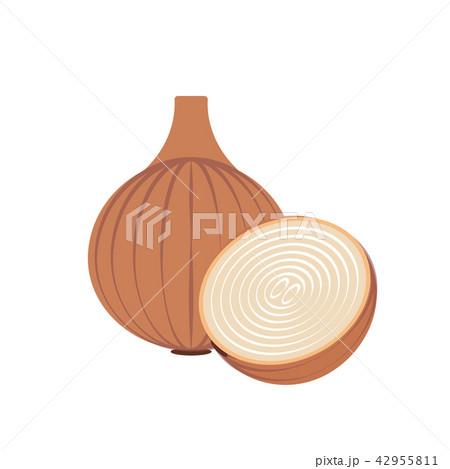 Nature organic vegetable Onion 42955811