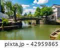 倉敷美観地区 川舟流し 観光の写真 42959865
