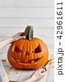 かぼちゃ カボチャ 南瓜の写真 42961611