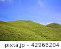 平尾台 青空 夏の写真 42966204