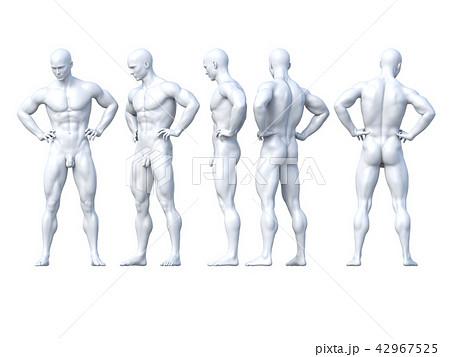 男性 ポーズ ヌード 白 Perming3dcg イラスト素材のイラスト素材