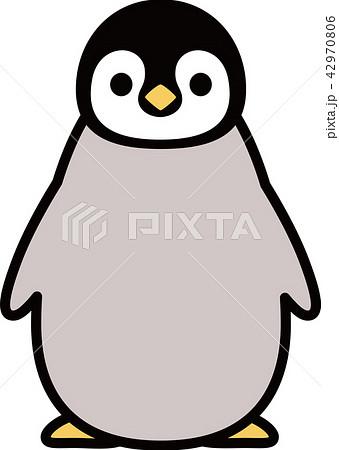 皇帝ペンギンのこども 正面のイラスト素材 [42970806] , PIXTA