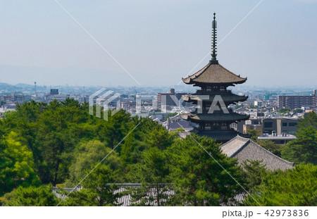 奈良興福寺五重塔遠望 42973836