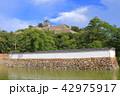 丸亀城 天守閣 城の写真 42975917