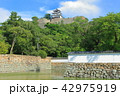 丸亀城 天守閣 城の写真 42975919