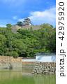 丸亀城 堀 城の写真 42975920