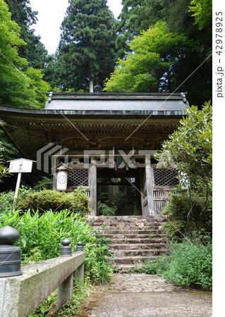 日本 京都 志明院 山門 Japan Kyoto Shimyoin 42978925