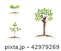 水彩 成長する木のイメージ 42979269