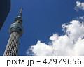 青空と東京スカイツリー 42979656