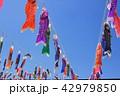 東京スカイツリー広場のこいのぼり 42979850