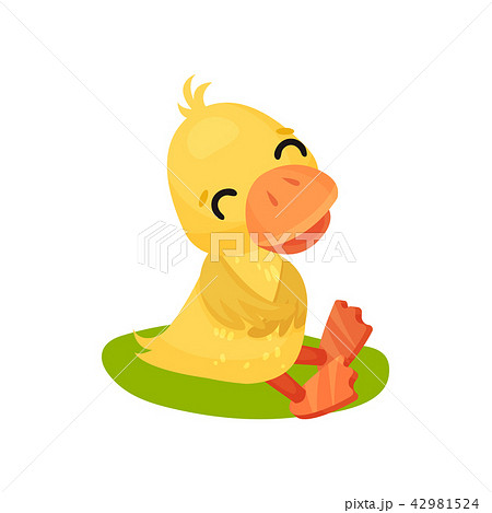 Funny smiling little yellow duckling character sitting on the grass vector Illustration on a white 42981524