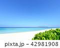海 ビーチ 砂浜の写真 42981908